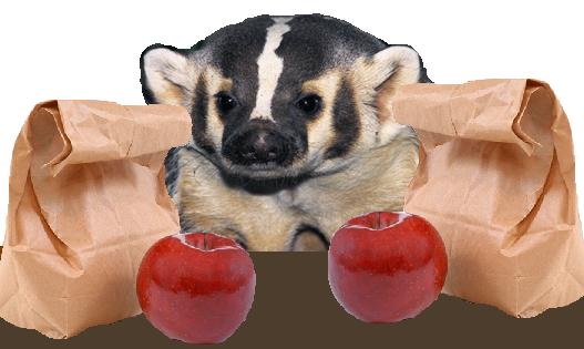 BadgerLunch