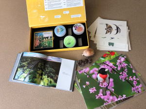 Picture memory kit nature contents